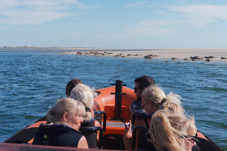Zeehonden kijken Texel - Het Sop Speedy